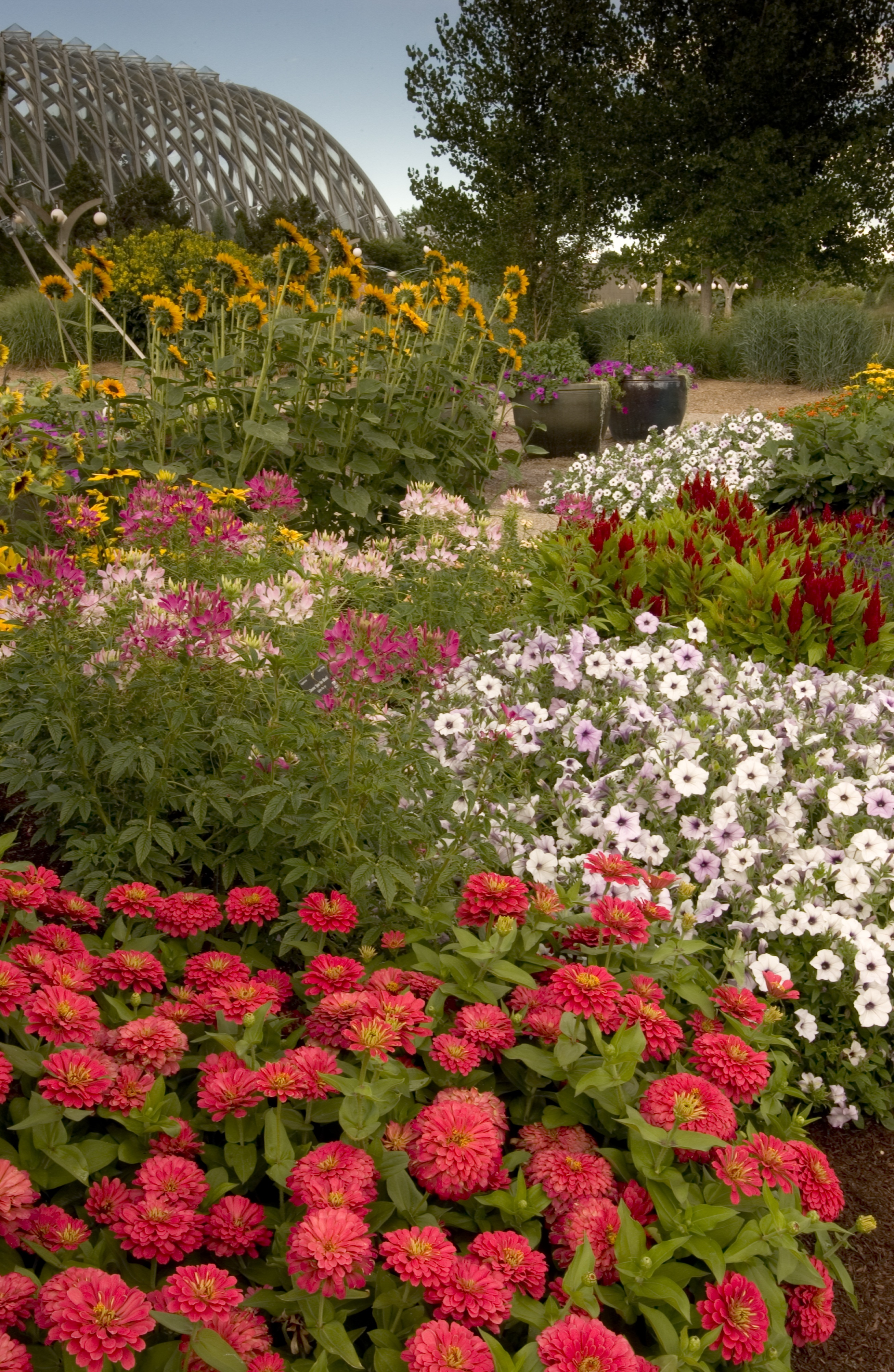 Rock Alpine Garden.Denver Botanic Gardens | Landscape Designs Which ...